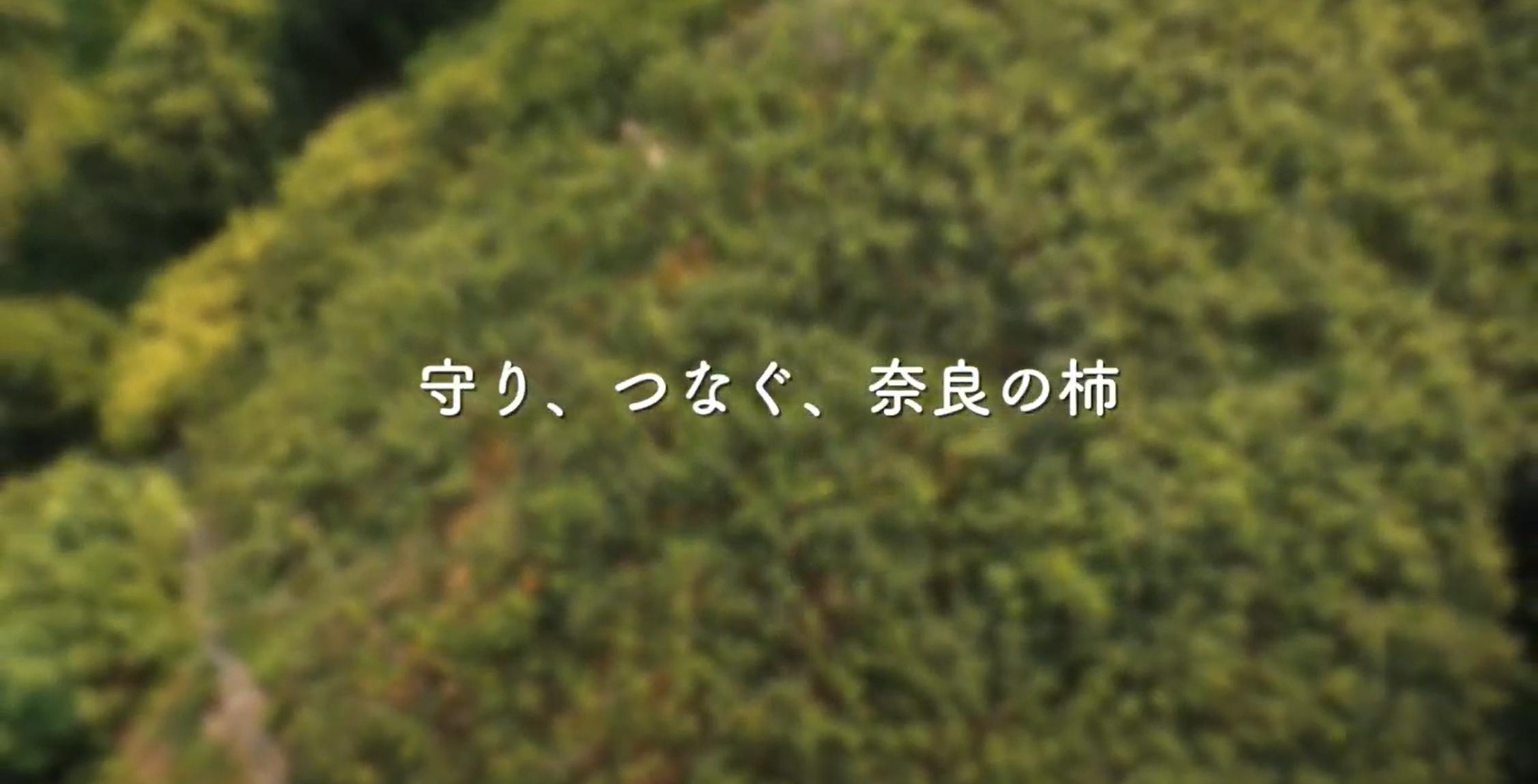「守り、つなぐ、奈良の柿」動画制作